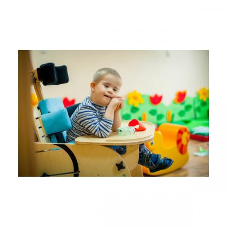 seggiolone pediatrico elefantino jumbo all mobility (1)