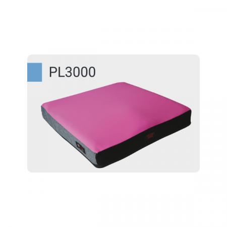 pl3000 euroausili (1)