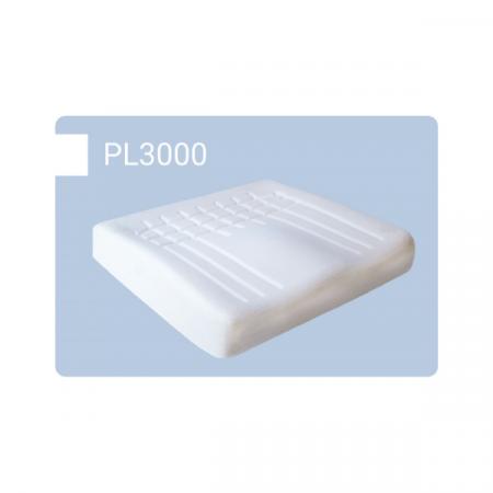 pl3000 euroausili (2)